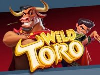 wild toro online slot game at HappyLuke China